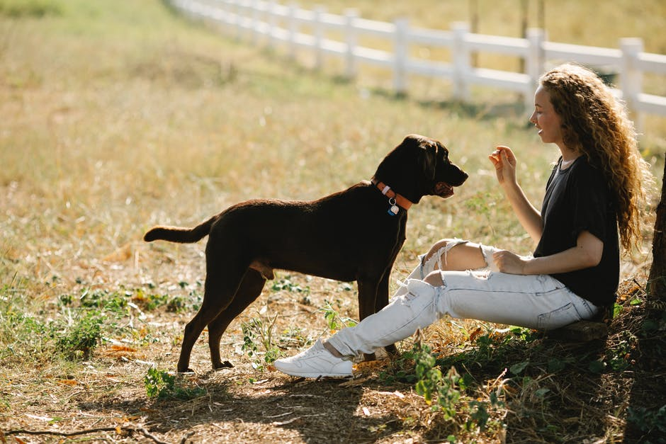 A person holding a dog in a field